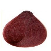 Red chestnut 28