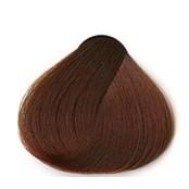 Golden chestnut 75